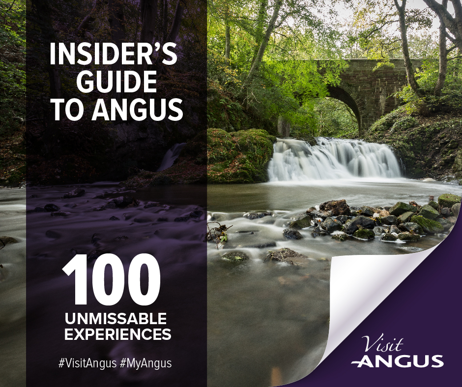 Insider's Guide graphic
