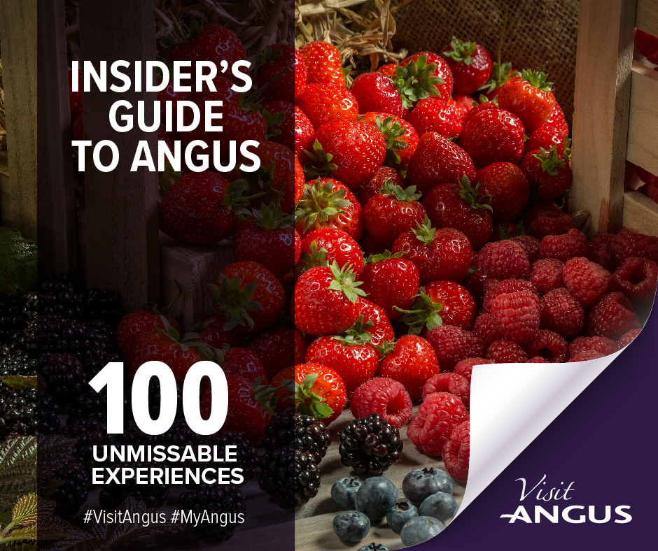 Insiders Guide graphic